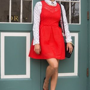 Main Strip Fit and Flare Dress
